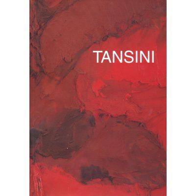 Erminio Tansini. Materia e colore