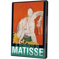 Il romanzo di Matisse (DVD)