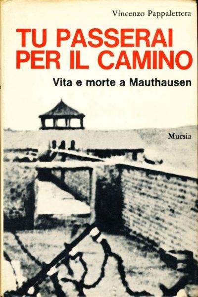 Vincenzo Pappalettera. Tu passerai per il camino