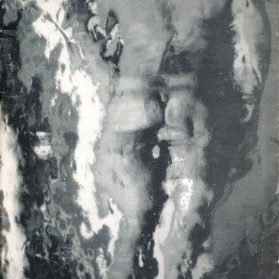 Stefano Scheda. Infinitapelle