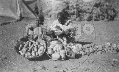 Africa Orientale Italiana - Banane e cedri