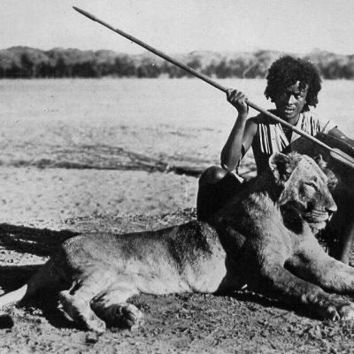 Africa Orientale Italiana - Il cacciatore e il leone