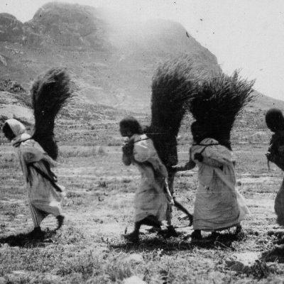 Africa Orientale Italiana - Donne ai campi