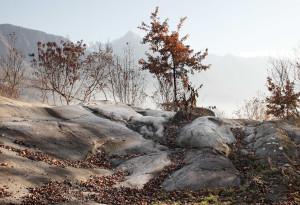 Incisioni rupestri 2