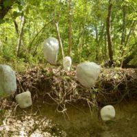 Land Art al Furlo - VIII edizione: Saxum