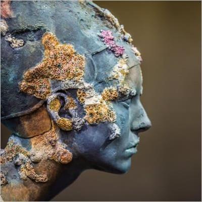 Treasures from the Wreck of the Unbelievable: tra Archeologia e Arte Contemporanea