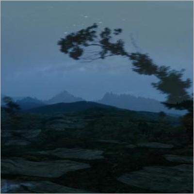 Video Proiezione: Elisa Strinna. The multiple landscape