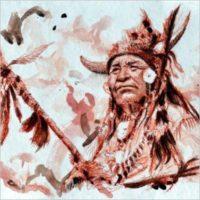 Bruno Pollacci. Nativi americani: la saggezza offfesa