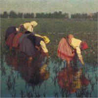 Vita in risaia. Lavoro e socialità nella pittura di Angelo Morbelli