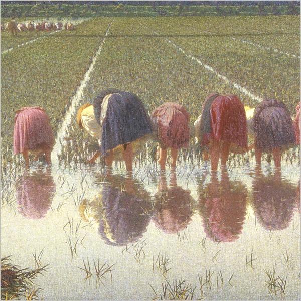 Vita in risaia. Lavoro e socialità nella pittura di Angelo Morbelli (Vercelli)