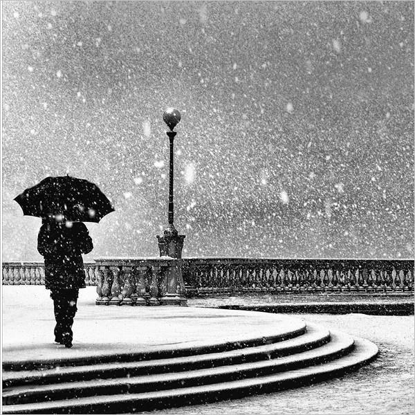 Livorno in bianco e nero - Mostra collettiva