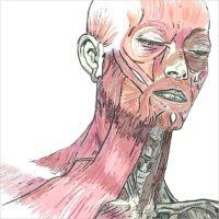 Seminario di Anatomia Artistica