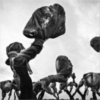Verso il cielo - Collettiva dei vincitori del Premio RAM Sarteano 2018