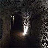 Visite guidate all'Area archeologica della Cittadella di Torino