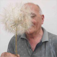 Mina D'Elia. Chi getta semi al vento, farà fiorire il cielo