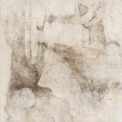 Riapertura straordinaria della Sala delle Asse di Leonardo da Vinci durante il restauro