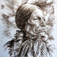 Bruno Pollacci. I miei nativi americani: la saggezza offesa