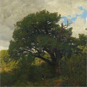I Maestri del paesaggio - VIII edizione
