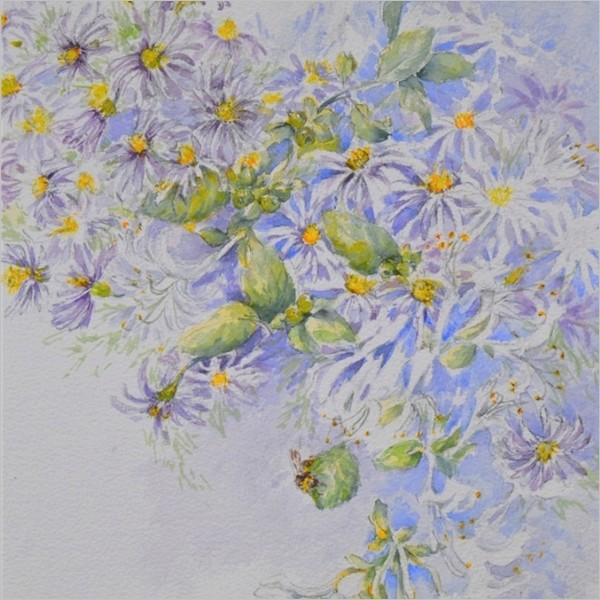 Chicchi Baggiani. La trasparenza dei fiori