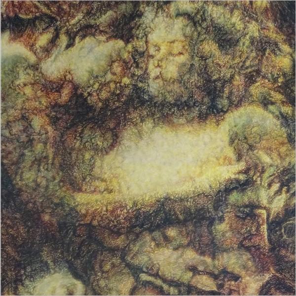 Francesco Trovato. La foresta della fenice