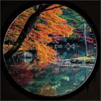Ikebana, il sentimento delle stagioni in Giappone