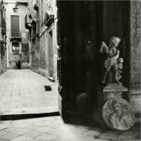 La fotografia di Paolo Monti