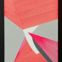 Ester Grossi e Giulio Zanet. Shapestorming - Le forme immaginate