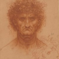 Leonardo da Vinci al Teylers Museum