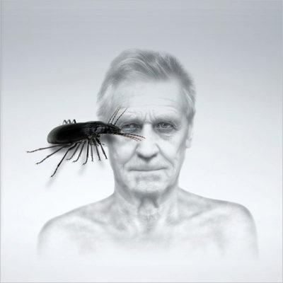 Antonello Matarazzo. Bug