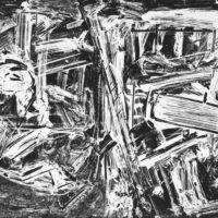 Da Vedova a Vedova. L'opera grafica di Emilio Vedova della collezione Albicocco