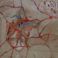 La secretissima camera de lo core - La Città dei Sassi raccontata dai suoi abitanti