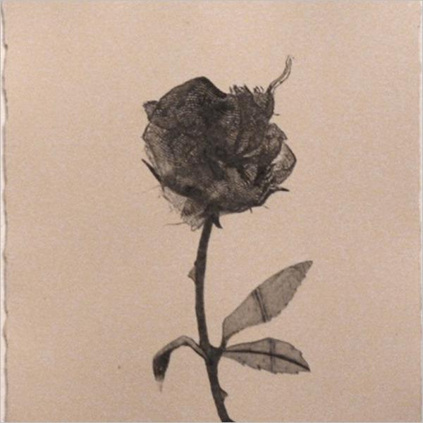 Mimesi e metafora - Il rapporto tra Arte e Natura
