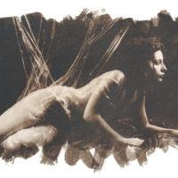 Arte.Go.Museum - Aldo Stefanni
