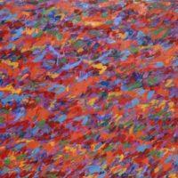 Discreto continuo - Alberto Bardi. Dipinti 1964 / 1984
