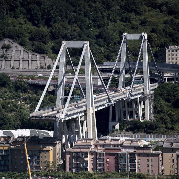 Concorso: Un manifesto per Genova