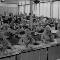 Formazione professionale, lavoro femminile e industria a Bologna, 1946-1970