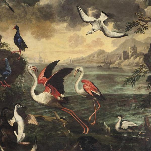 Il meraviglioso mondo della Natura. Una favola tra arte, mito e scienza