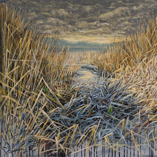 Ivo Bonino. L'arte tra materia e colore