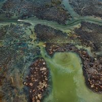 Anthropocene. Un'esplorazione multimediale dell'impronta umana sulla Terra
