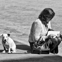 Gianni Maffi. Nel Paese dei non lettori - Pavia Foto Festival