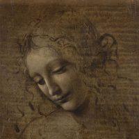 La fortuna della Scapiliata di Leonardo da Vinci