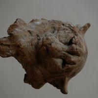 Wildlife. Le monumentali sculture animali di Jürgen Lingl-Rebetez