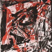L'immagine (è) necessaria - Stamperia d'arte Albicocco
