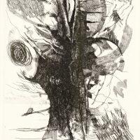 Luciano De Vita. Autoritratto