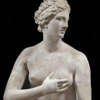 A tu per tu con l'opera: la Venere de' Medici ai Musei Civici di Pavia