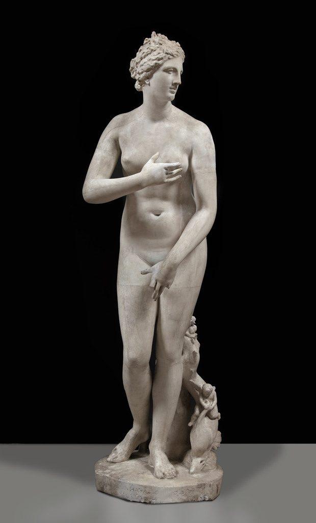 Venere de' Medici - Musei Civici di Pavia