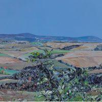 Anna Sala. Il deserto di Acona 700 anni dopo