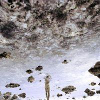 Francesca Di Bonito. Migrations