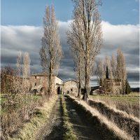 Riflessi antichi, visioni contemporanee. Arezzo e il suo territorio