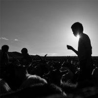 Sara Munari. Vanishing shepherds - Voghera Fotografia